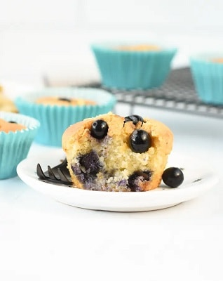 Almond flour low carb blueberry muffin on a plate