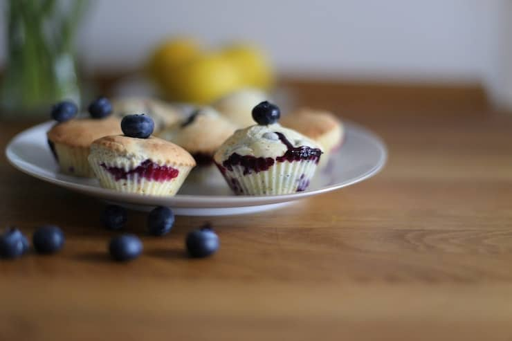 Low-carb blueberry muffin recipes